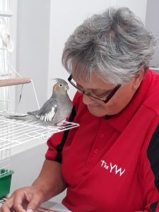 Housekeeper with our cockatiel, Esther